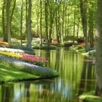 Los jardines Keukenhof