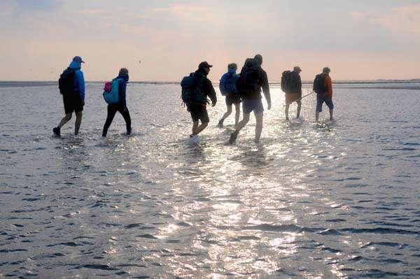 Caminata en las Islas Wadden