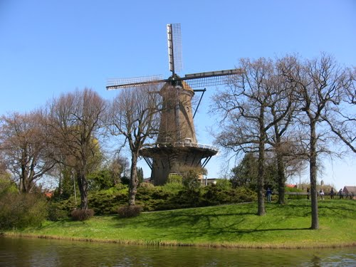 Molino en Alkmaar