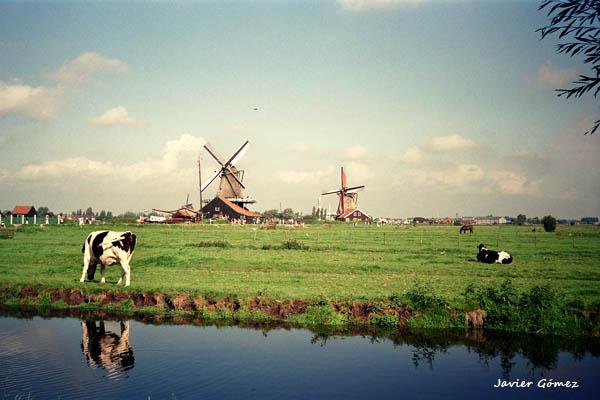 Tour por Marken, Volendam y Zaanse Schans