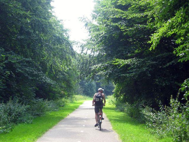 Ciclismo, senderos, bosques, almere, holanda