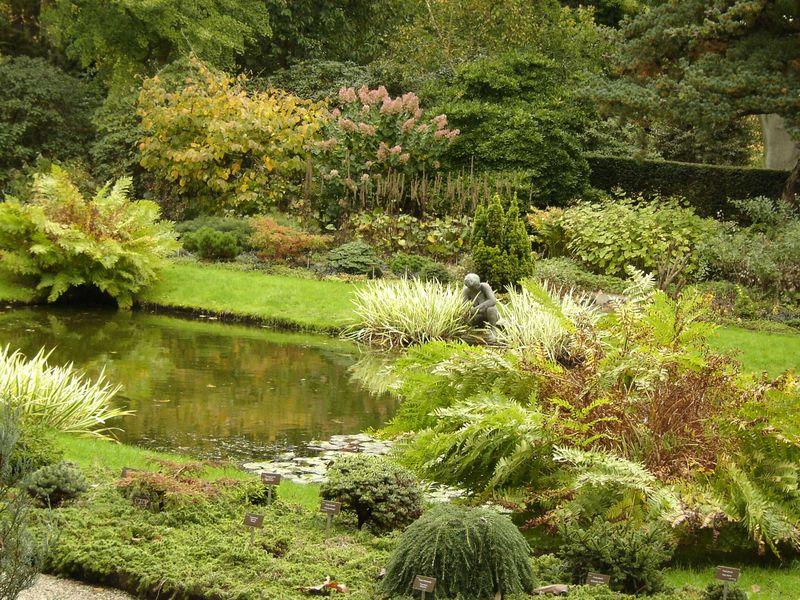 Jardines botánicos de Rotterdam