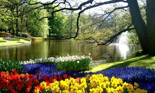 Jardines de holanda - Jardines de tulipanes en holanda ...