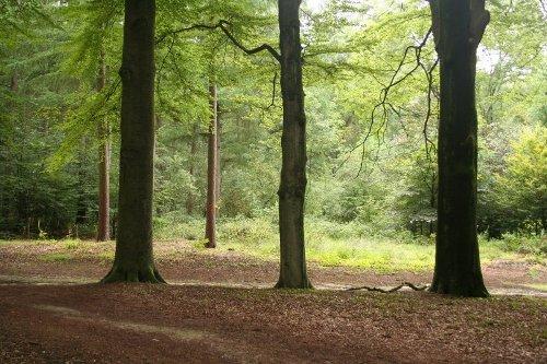 Vida al aire libre en Arnhem