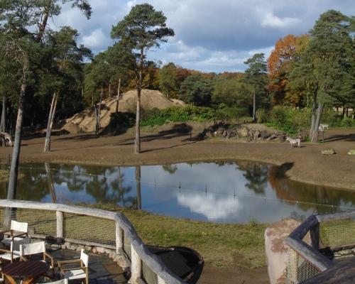El zoológico Burger, en Arnhem
