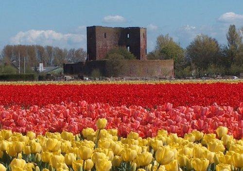 El castillo Teylingen