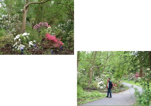 Arboretum Notoarestoen, recreacion y naturaleza