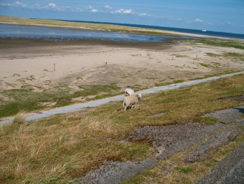 El Mar Frisio, Patrimonio de la Humanidad