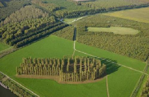 Oostvaardersplassen y Land Art en Flevoland